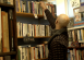 The bookshop owner reaching up onto a shelf