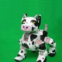 Doglab cyber dog