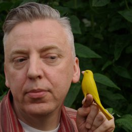 Stuart Nolan's Ideobird