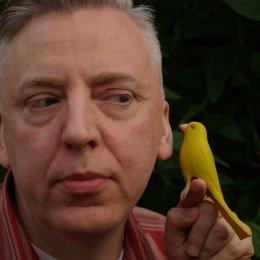 Stuart Nolan and his IdeoBird
