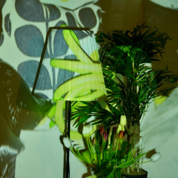 Image of lamp and plant